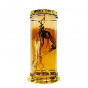 Giá bán Vỏ Bình Thủy Tinh ngâm rượu Hàn Quốc N1-73 Lít dạng bình trụ tại tphcm