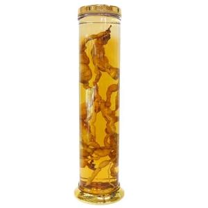 Giá bán Vỏ Bình Thủy Tinh ngâm rượu Hàn Quốc N19-48 Lít dạng bình trụ  tại tphcm
